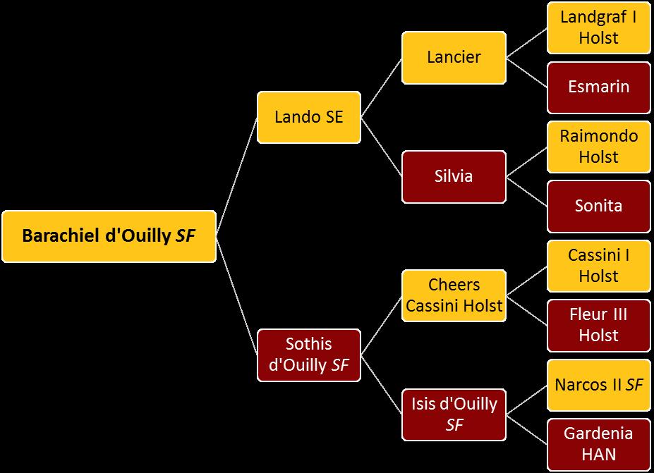 Barachiel d'Ouilly SF - Tree