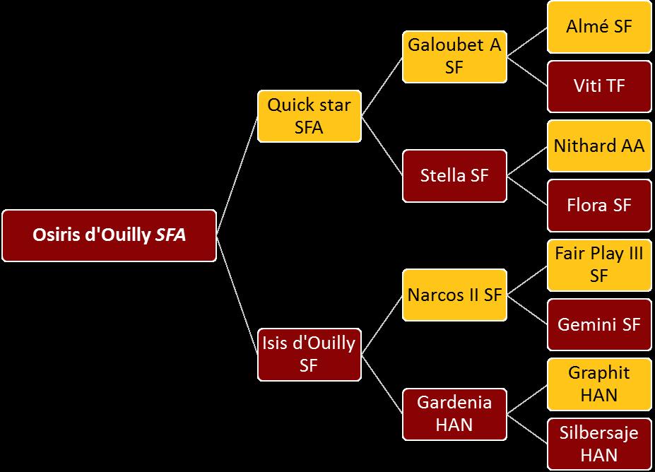 Osiris d'Ouilly - Généalogie
