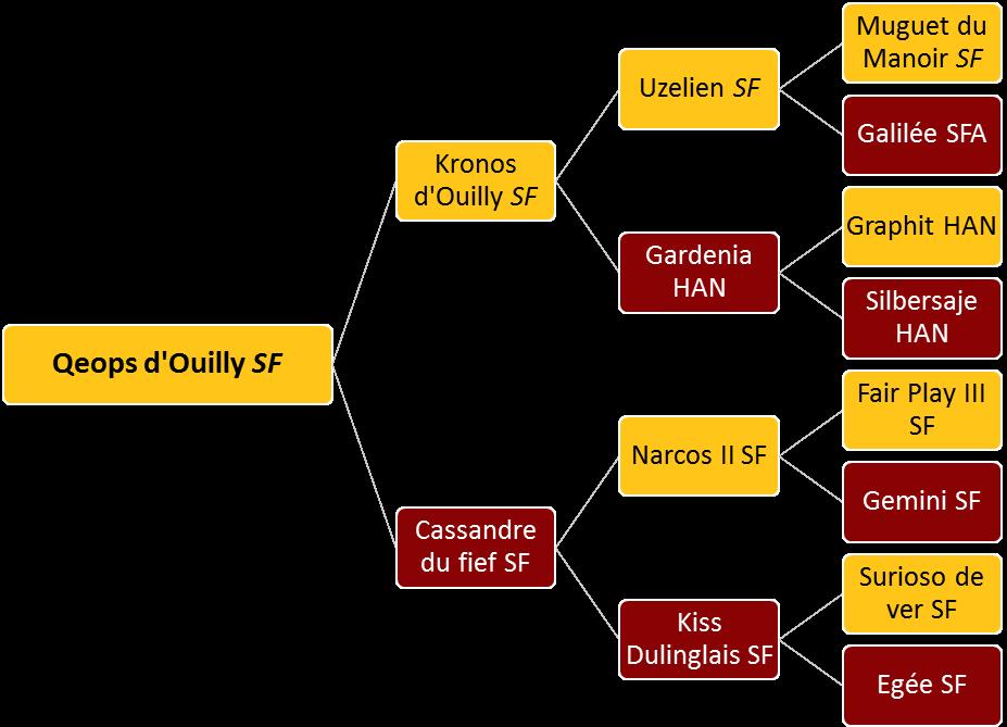 Qeops d'Ouilly - Généalogie
